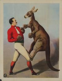 Kangaroo_Boxing_sideshow_poster